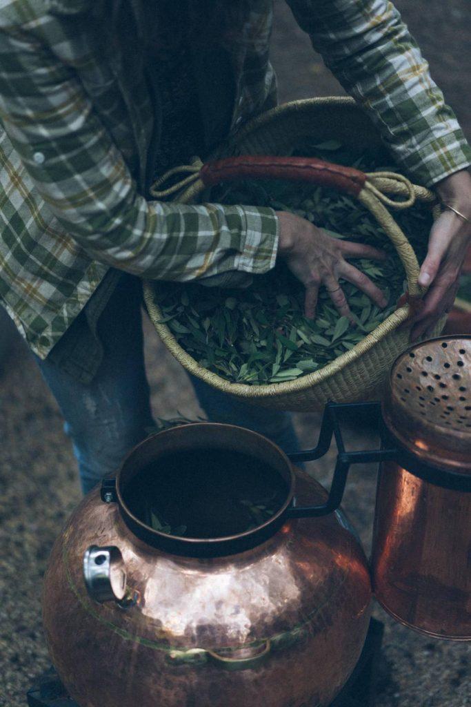 botanical skincare canada